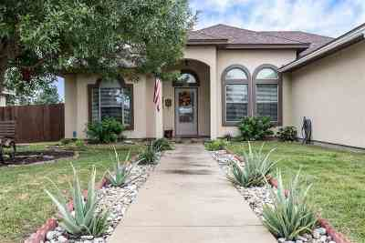 Del Rio TX Single Family Home NEW: $207,000