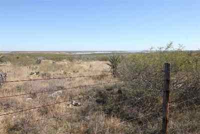 Brackettville, Del Rio, Comstock Residential Lots & Land ACTIVE: 16533 Us Hwy 90 W Tx