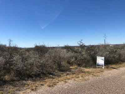 Brackettville, Del Rio, Comstock Residential Lots & Land ACTIVE: 181 Apache