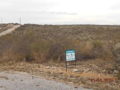 Del Rio Residential Lots & Land NEW: 412 Puma St