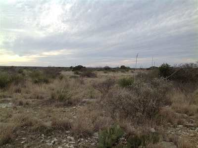Residential Lots & Land ACTIVE: Unit Ii, Lot 4 White Tail Ranches