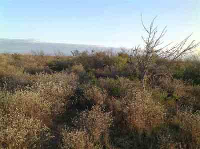 Comstock Residential Lots & Land ACTIVE: Seminole Springs Ranch, Lot 2 & 3