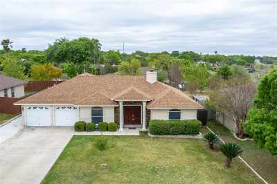 Del Rio TX Single Family Home Under Contract: $207,000