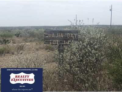 Brackettville, Del Rio, Comstock Residential Lots & Land ACTIVE: 114 & 115 Guajia Bay