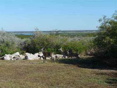 Residential Lots & Land ACTIVE: 699 Lago Vista Dr.