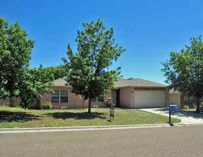 Del Rio Single Family Home ACTIVE: 274 Vista Hermosa