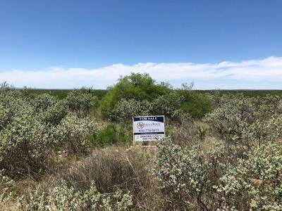 Brackettville, Del Rio, Comstock Residential Lots & Land ACTIVE: Lot 25 Salem Point