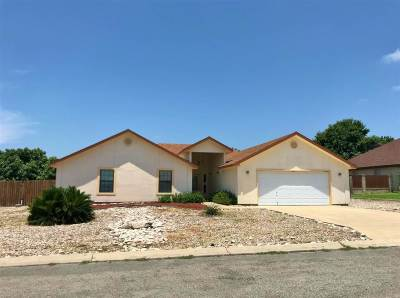 Single Family Home NEW: 203 Saddle Blanket Tr