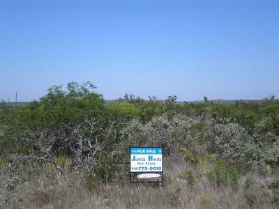 Brackettville, Del Rio, Comstock Residential Lots & Land ACTIVE: 40 Willow Circle