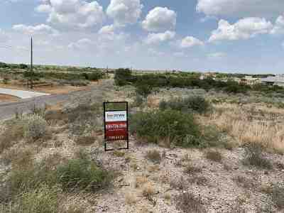 Brackettville, Del Rio, Comstock Residential Lots & Land NEW: 678 Cherokee Trail