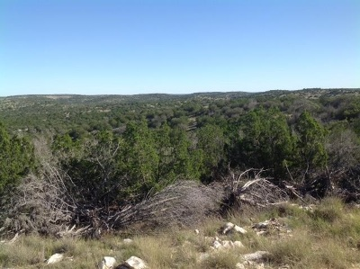Residential Lots & Land ACTIVE: Muckleroy 407.2 Acres