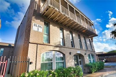Galveston Condo/Townhouse For Sale: 215 Postoffice Street