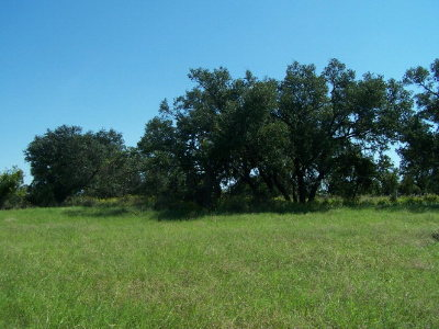 Mason County Residential Lots & Land For Sale: 5 Ischar Lane