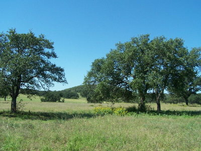 Mason County Residential Lots & Land For Sale: 13 Ischar Lane