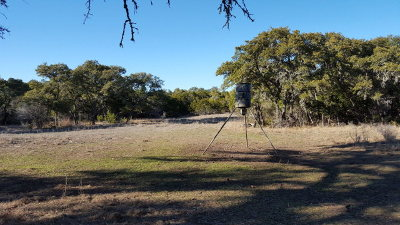 Ranch Land For Sale: 233 SE Fm 473