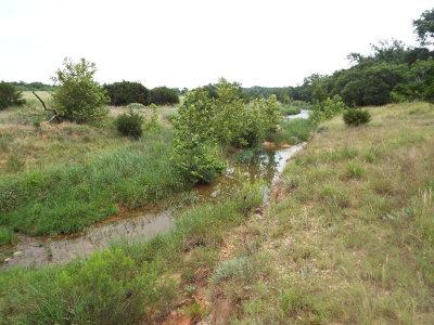 Ranch Land Under Contract W/Contingencies: 758 Upper Live Oak