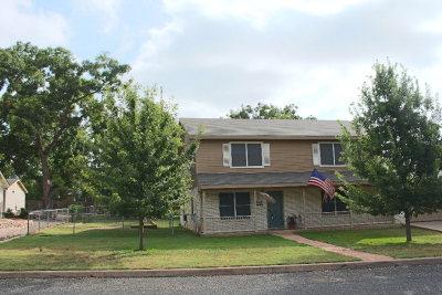 Fredericksburg Single Family Home For Sale: 324 W Nimitz St