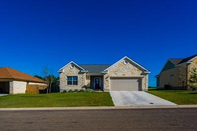 Fredericksburg Single Family Home For Sale: 708 E Englemann Oak Dr