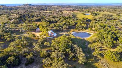 Fredericksburg Single Family Home For Sale: 985 Klein-Ahrens Rd