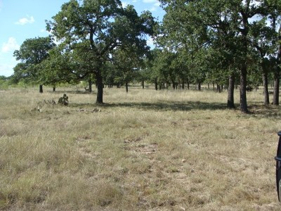 Ranch Land Under Contract: 19300 W Fm 2093