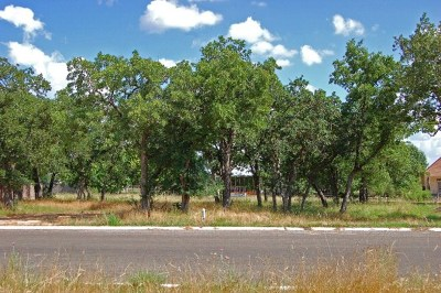 Fredericksburg Residential Lots & Land For Sale: 2237 Stone Meadow
