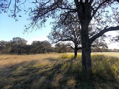 Fredericksburg Residential Lots & Land For Sale: 2382 E Goehmann Lane