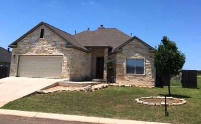 Fredericksburg Single Family Home For Sale: 806 NE Scarlet Oak Court