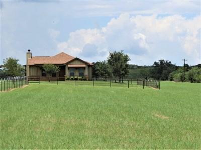 Fredericksburg Single Family Home For Sale: 460 E Goehmann Lane