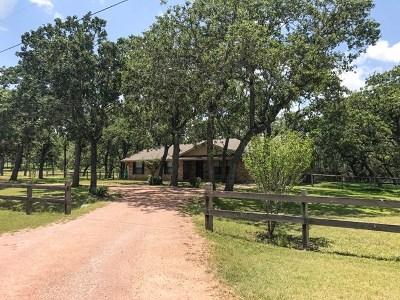 Fredericksburg Single Family Home For Sale: 248 NE Oak Haven Rd
