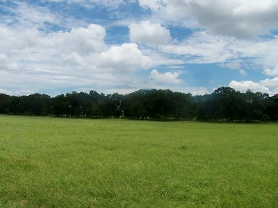 Residential Lots & Land For Sale: N Bermuda Lane