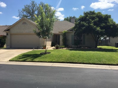 Fredericksburg Single Family Home Under Contract: 313 Chase Oaks Place