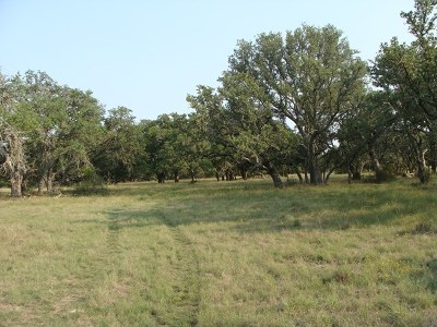 Ranch Land For Sale: 19500 Fm 2093