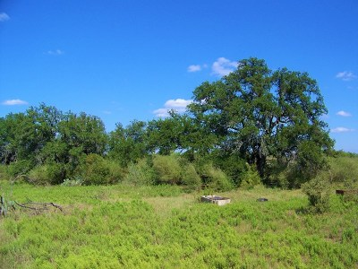 Llano Residential Lots & Land For Sale: W Hwy 71