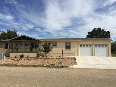 Fredericksburg Single Family Home For Sale: 205 Shannon Dr