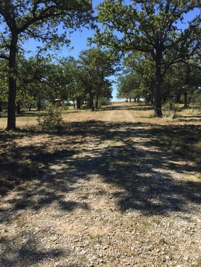 Residential Lots & Land For Sale: 587 Big Bend Ln