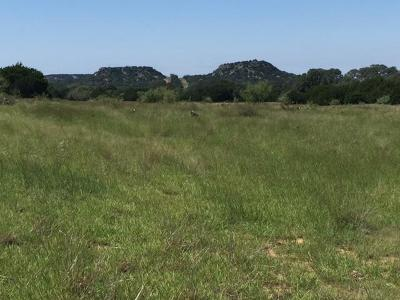 Ranch Land For Sale: 3610 Welgehausen Rd