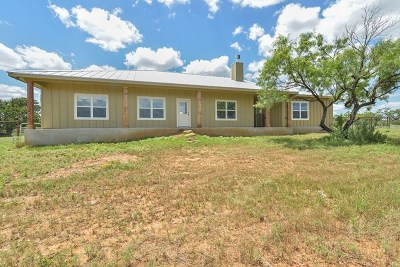Mason County Single Family Home For Sale: 7625 S Hwy 87