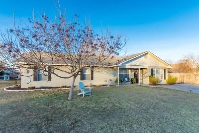Fredericksburg Single Family Home For Sale: 596 S Dusk Lane