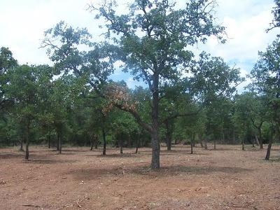 Fredericksburg Residential Lots & Land For Sale: E Pedernales Estates Road
