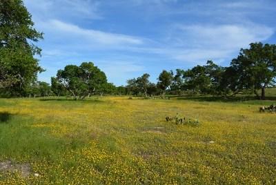 Fredericksburg Residential Lots & Land For Sale: 591 Overlook Dr