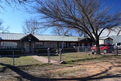Mason County Single Family Home For Sale: 717 E Rainey