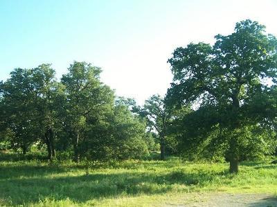 Fredericksburg Residential Lots & Land For Sale: 12101 N State Hwy 16