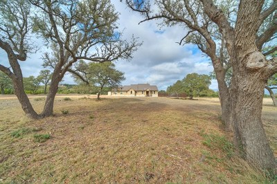 Blanco County Single Family Home For Sale: 664 Bluff Ridge Trail