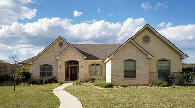 Fredericksburg TX Single Family Home For Sale: $437,500