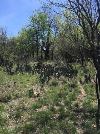 Mason County Single Family Home For Sale: 331 Comanche