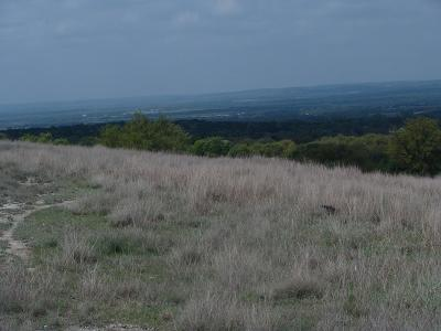 Ranch Land For Sale: Vista View Lane