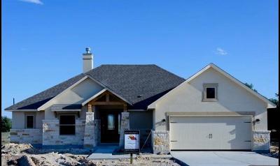 Blanco County Single Family Home For Sale: 102 Jacob Roberts