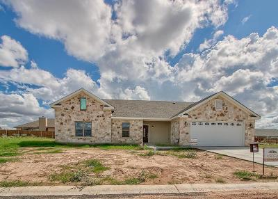 Gillespie County Single Family Home For Sale: 703 Emory Dr