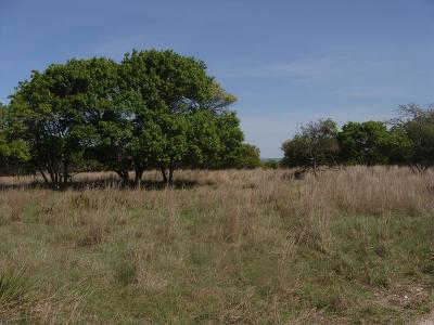 Ranch Land Under Contract W/Contingencies: Vista View Lane