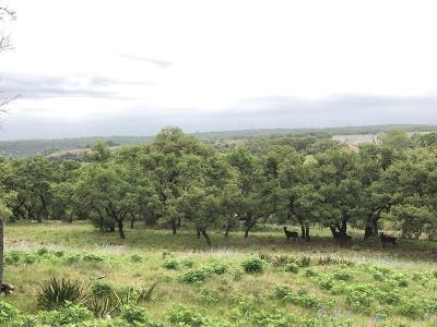 Fredericksburg Residential Lots & Land For Sale: 31 Boot Ranch Circle